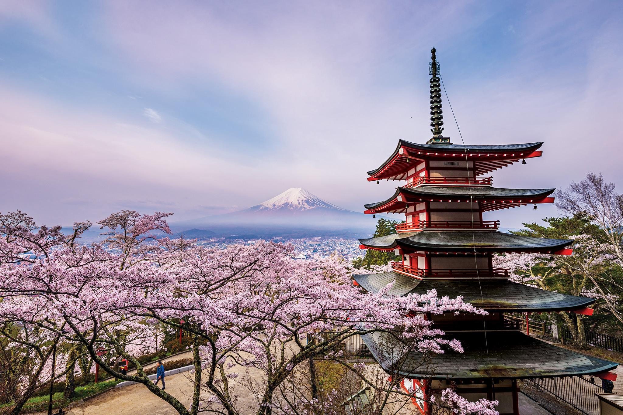 Япония — самая подробная информация с фото и видео
