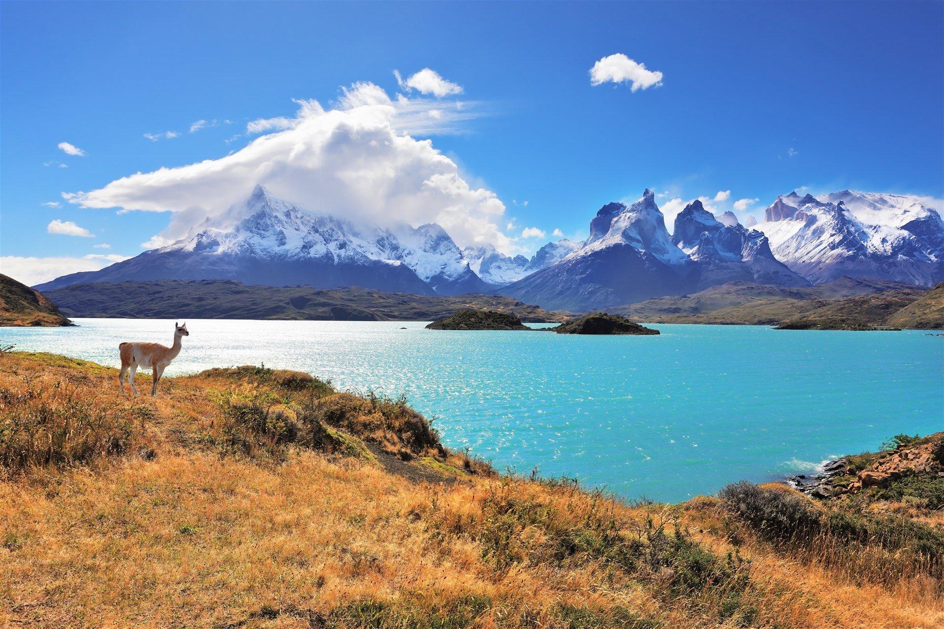 Где находится Чили? — страна на карте мира