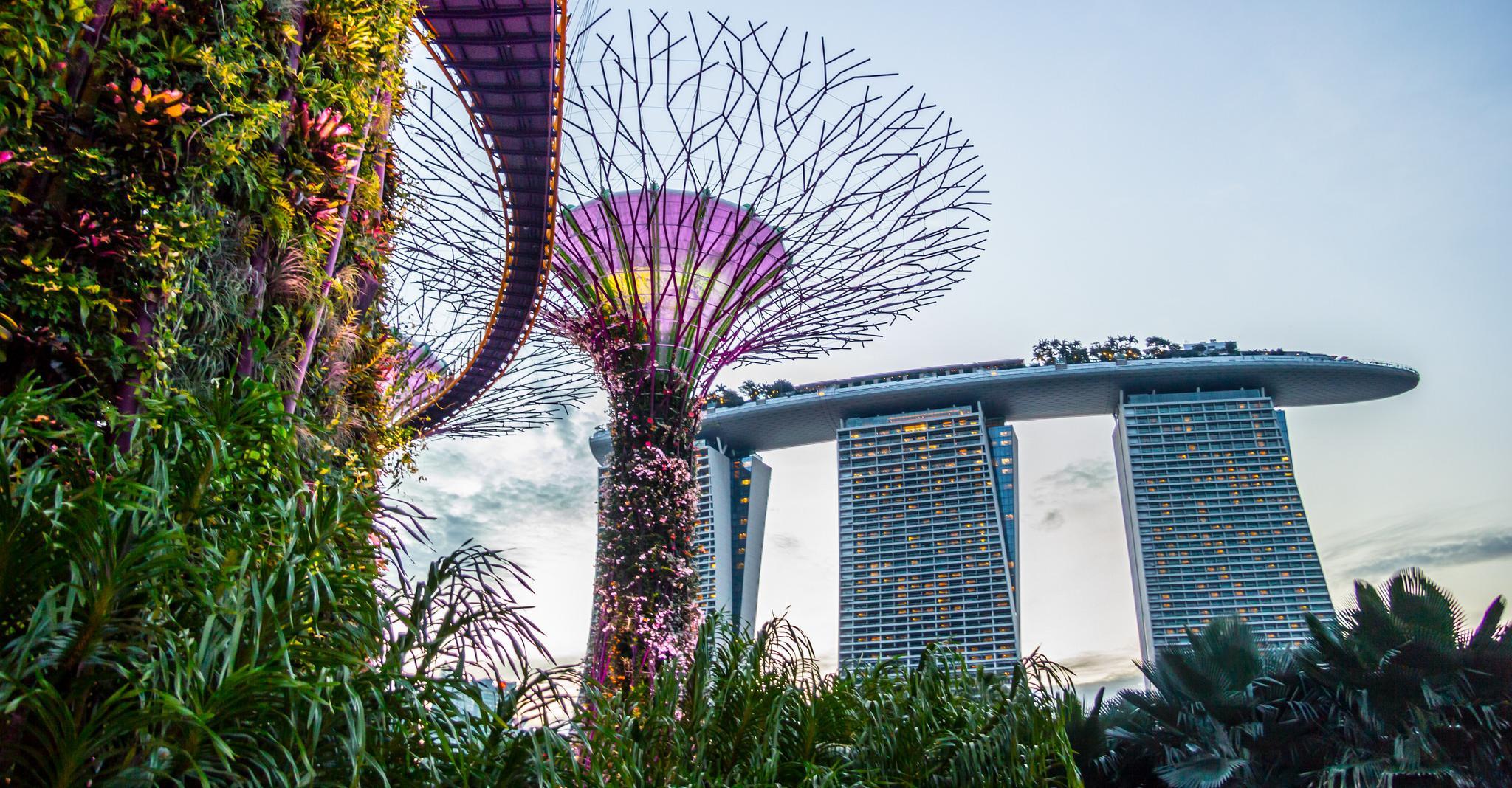 Сингапур — подробная информация с фото и видео || Сингапур Достопримечательности фото и описание столица карта города погода курорты