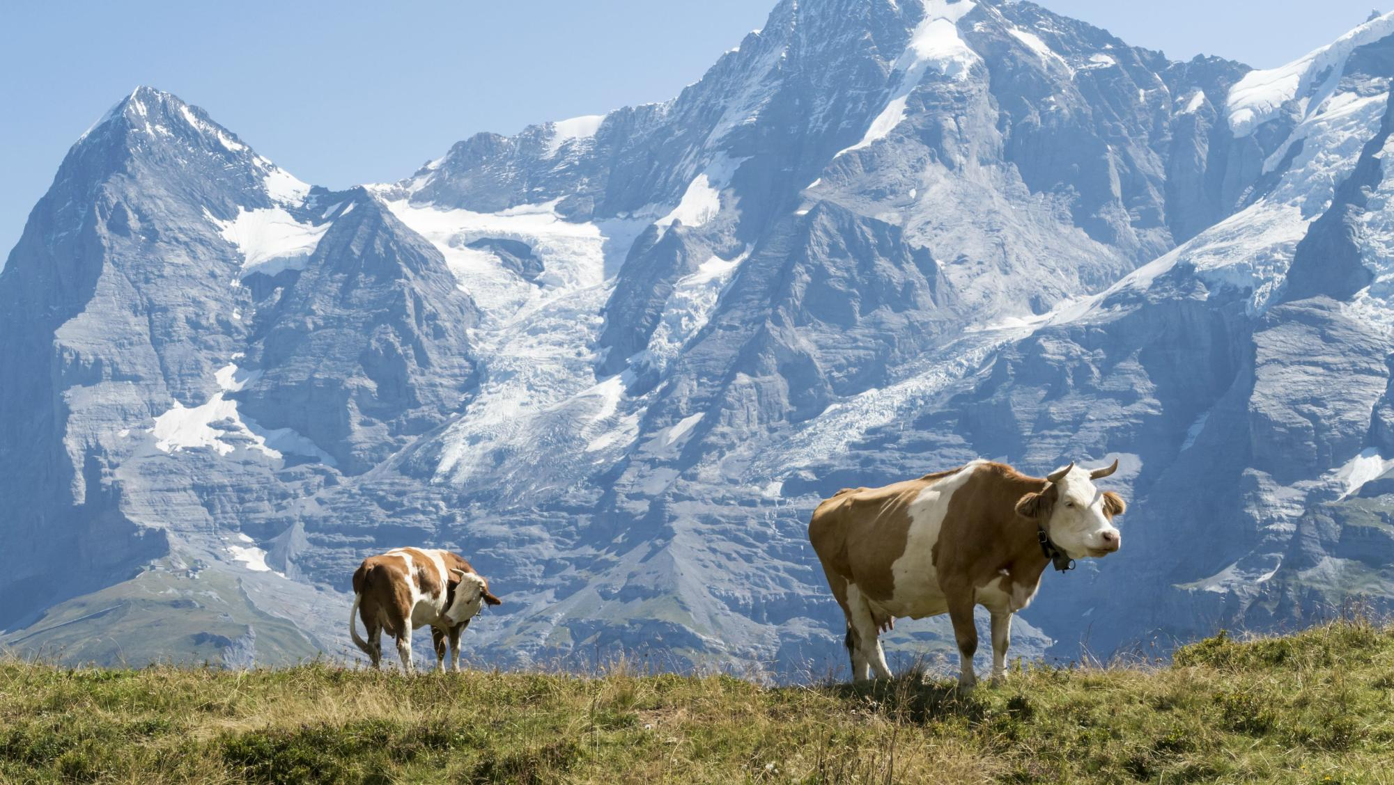 Достопримечательности Швейцарии: список, описание