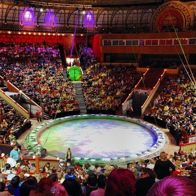 цирк на проспекте вернадского фото внутри несколько