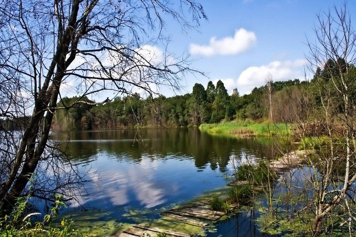 Озера смоленска фото