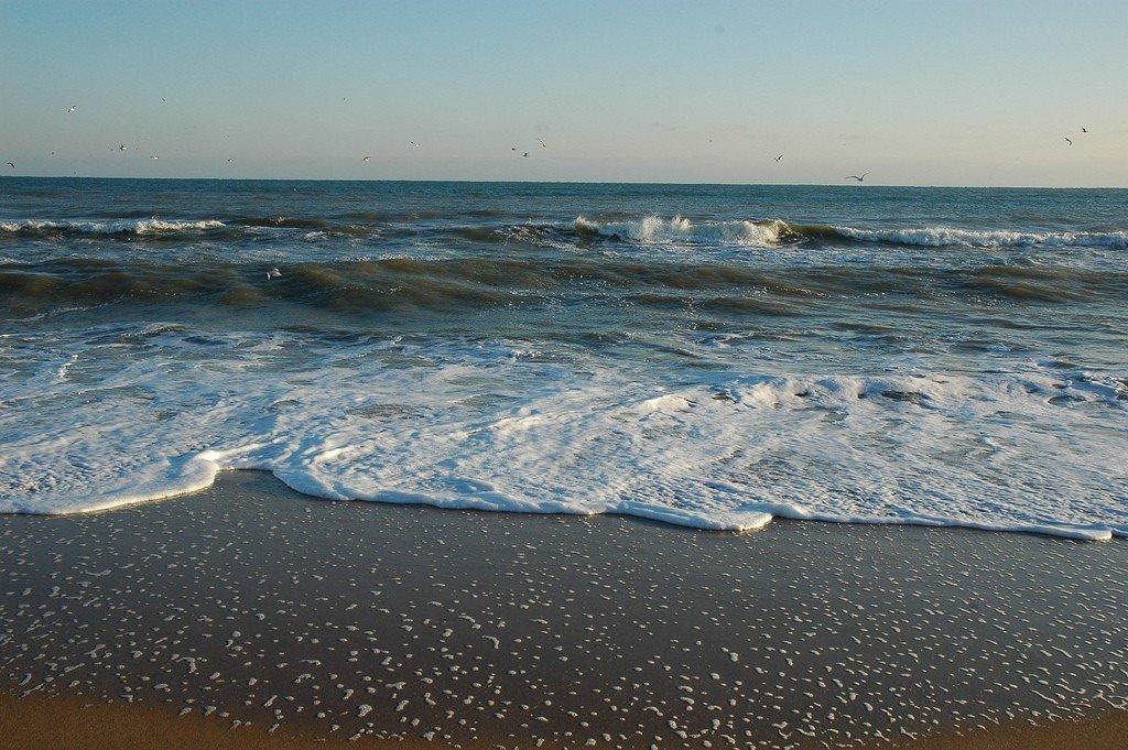 новые картинки азовского моря истребляют только
