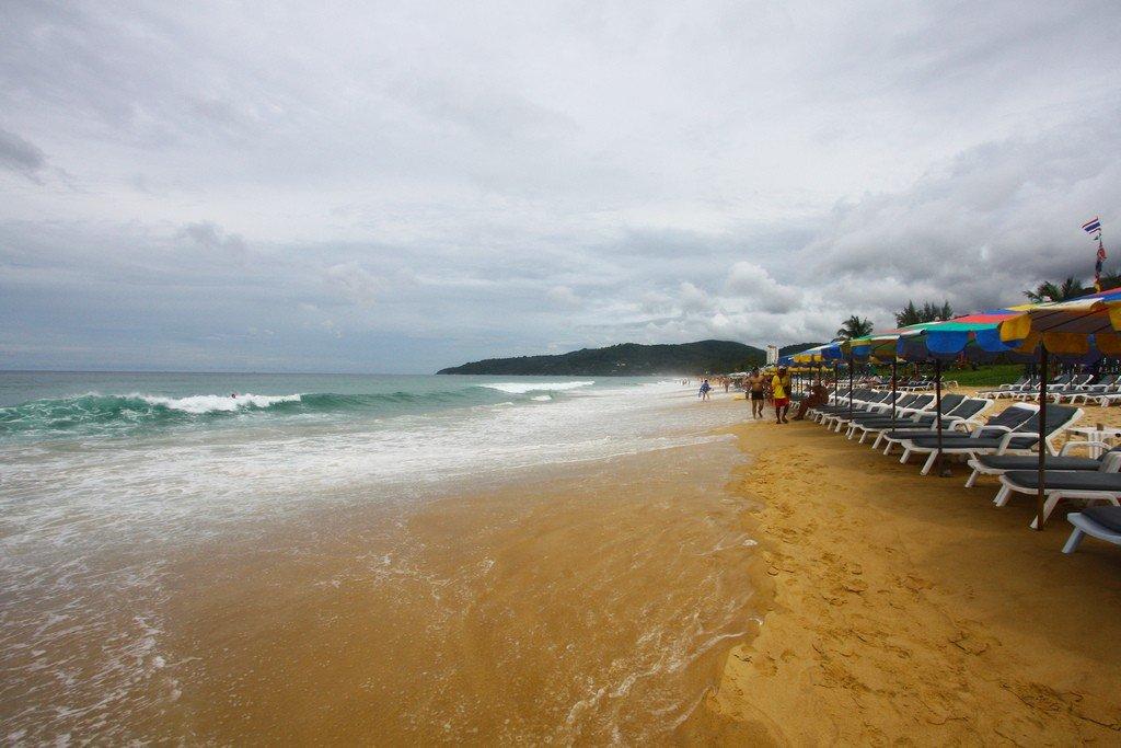любителей суккулентов карон пляж наводнение фото жалюзи изотра предназначены