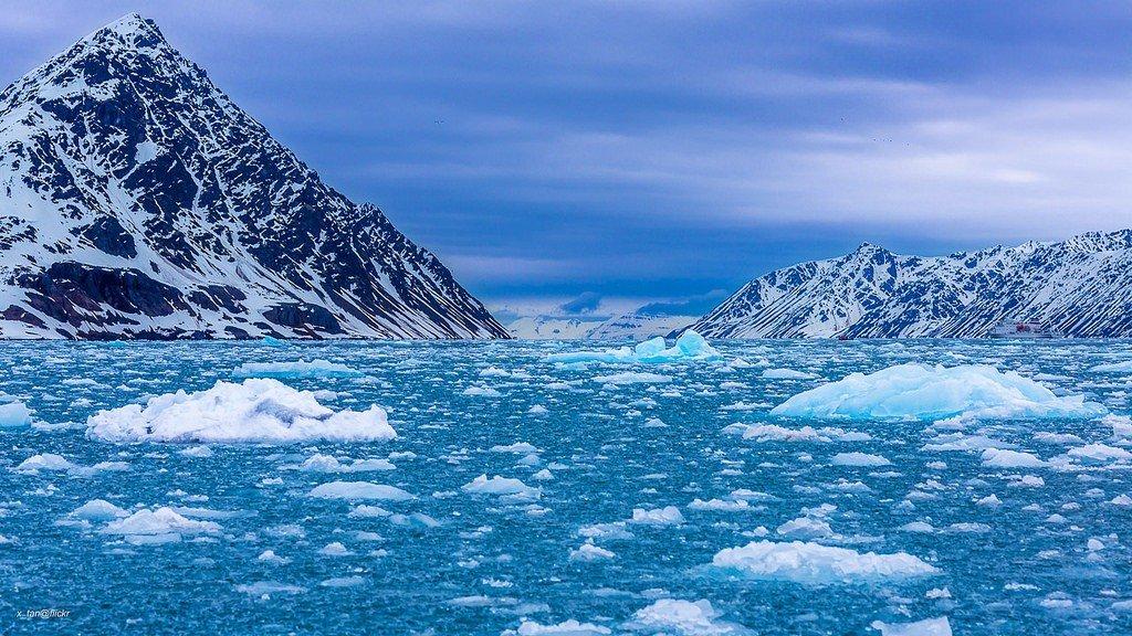 рода техника северный ледовитый океан картинки простые зубчатые