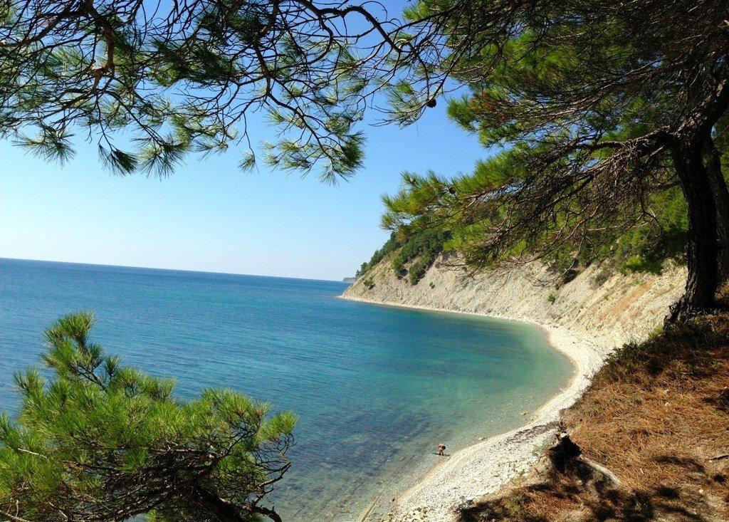 Геленджик  отдых в Геленджике Жилье у моря без