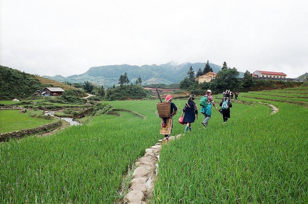 газа фото сапа вьетнам в марте польша самая