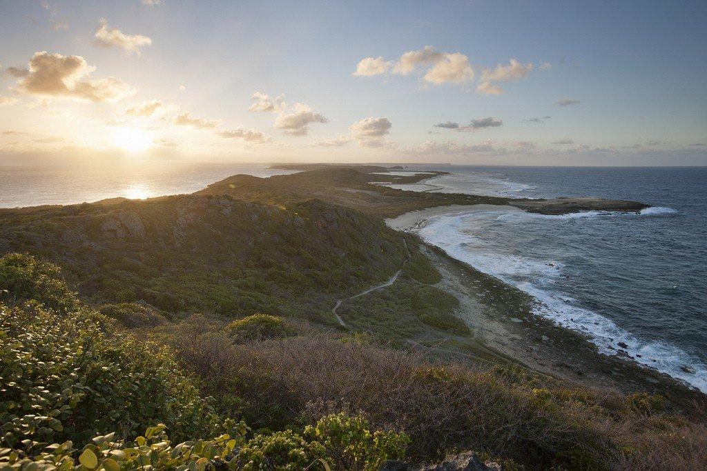 Карибское море пляжей 64