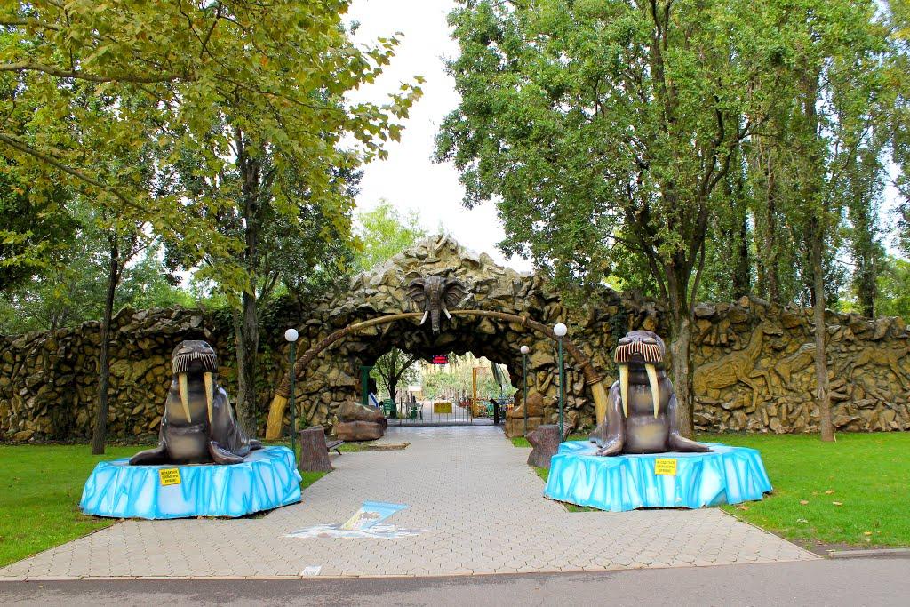 картинки парк солнечный остров