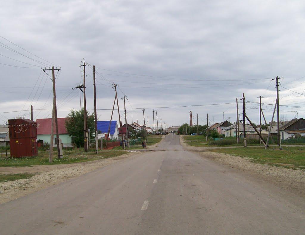 этой целью село фершампенуаз челябинская область фото ветви