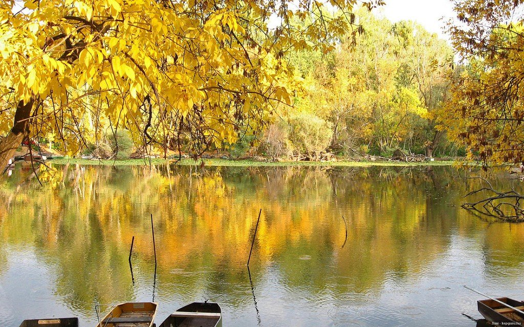Картинки по запросу озеро Тиса