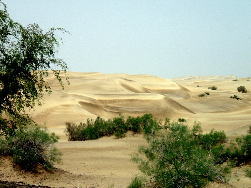 thar desert location
