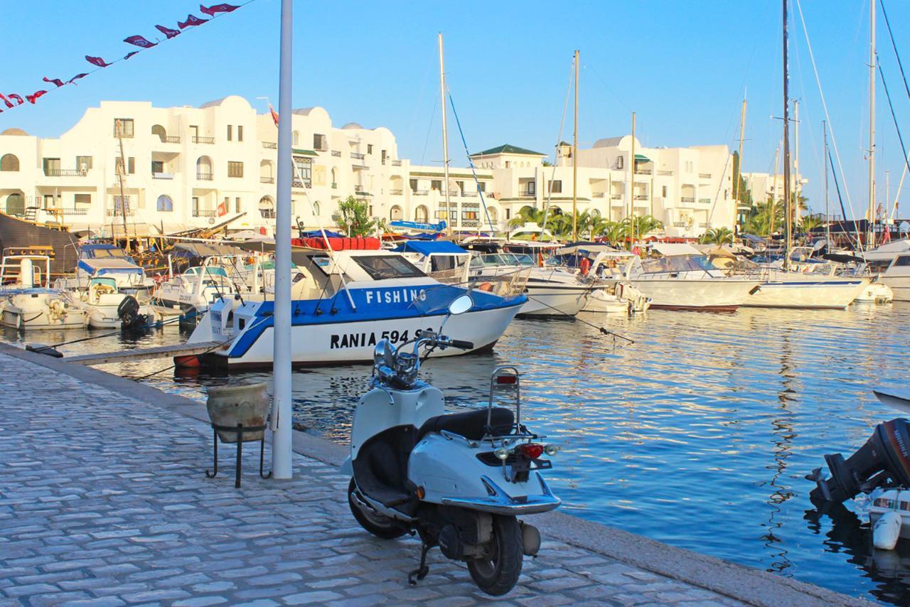 рождеством, фото фонтан в порту тунис сусс целью является распространение