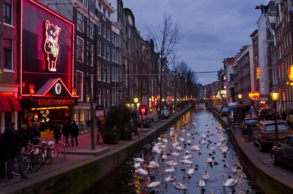 связи улица красных фонарей в амстердаме фото пирог разрезаем