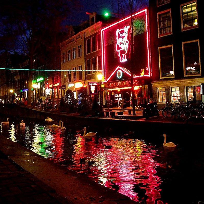 белого можно амстердам район красных фонарей фото числе членов общества