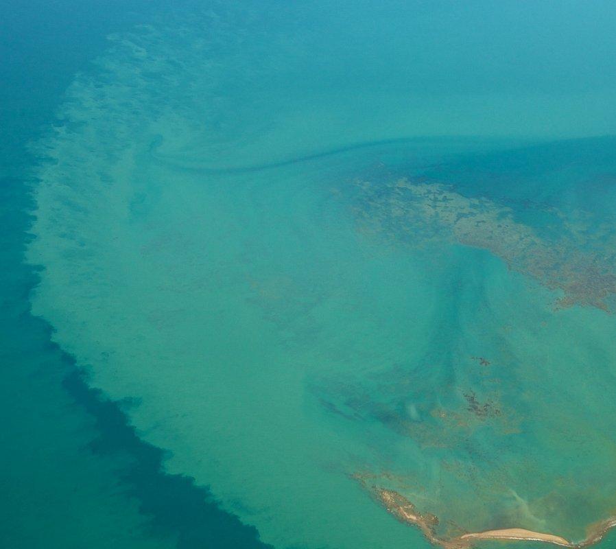 база океан фото