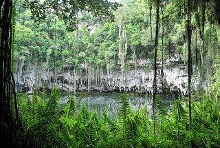 Озеро укрытое в джунглях