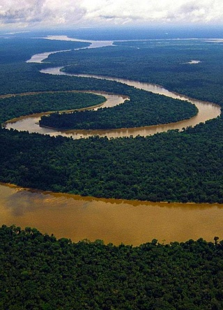 Притоки Амазонки