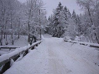 Зима в заповеднике