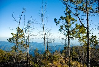 Горы острова Гаити
