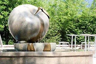 Яблоко в парке у телевышки