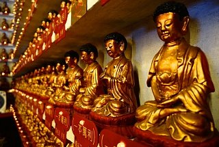 Здесь находится 12 800 статуй Будд