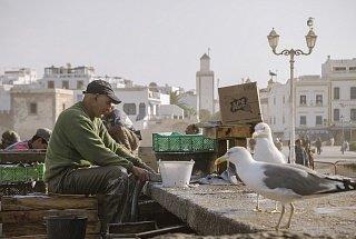 Рабочий в порту Эс-Сувейры